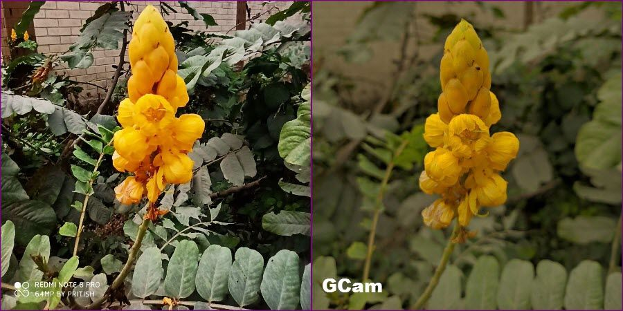 Gcam отличается от фото в обычном приложении